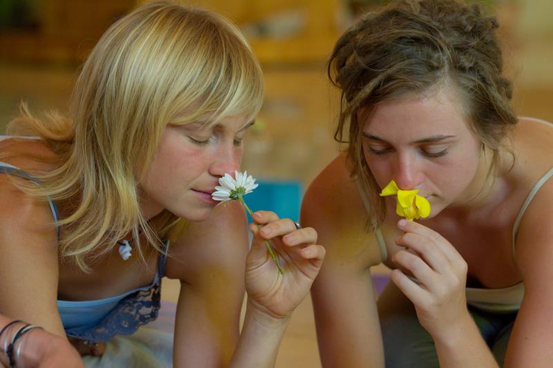 flowerplay2