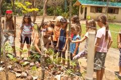 school-eco-ananda01