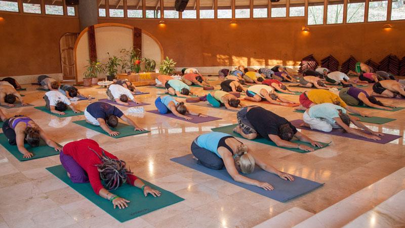 Yoga-Osho-Hall-Group-(3)