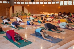 Yoga-Osho-Hall-Group-(3)