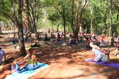 yoga-forest15