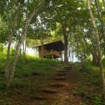 casita in the forest