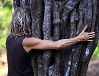 Pachamama - Core Healing
