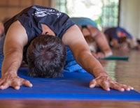 Pachamama - Iyengar Yoga Morning Intensive