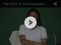 THE EYES OF CONSCIOUSNESS