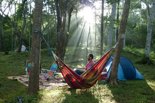 Camping – Basic Fee