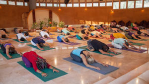 yoga transformation cycle nadi