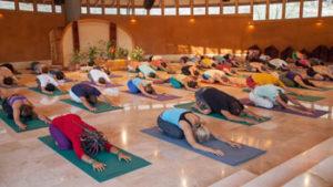 yoga transformation cycle nadi