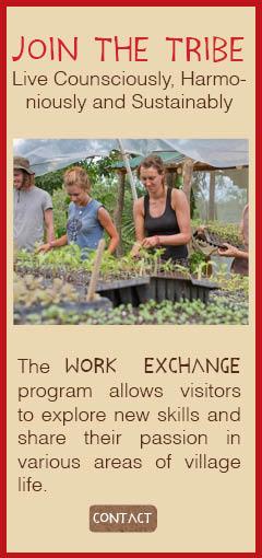 Work Exchange-Eco Village-PachaMama-Costa Rica