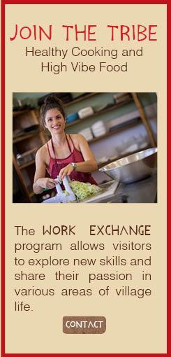 Work Exchange-Vegetarian Restaurant-PachaMama-Costa Rica