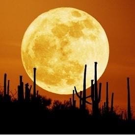 Blog-astrology-moon-tarit