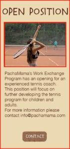 work-exchange-tennis-volunteer