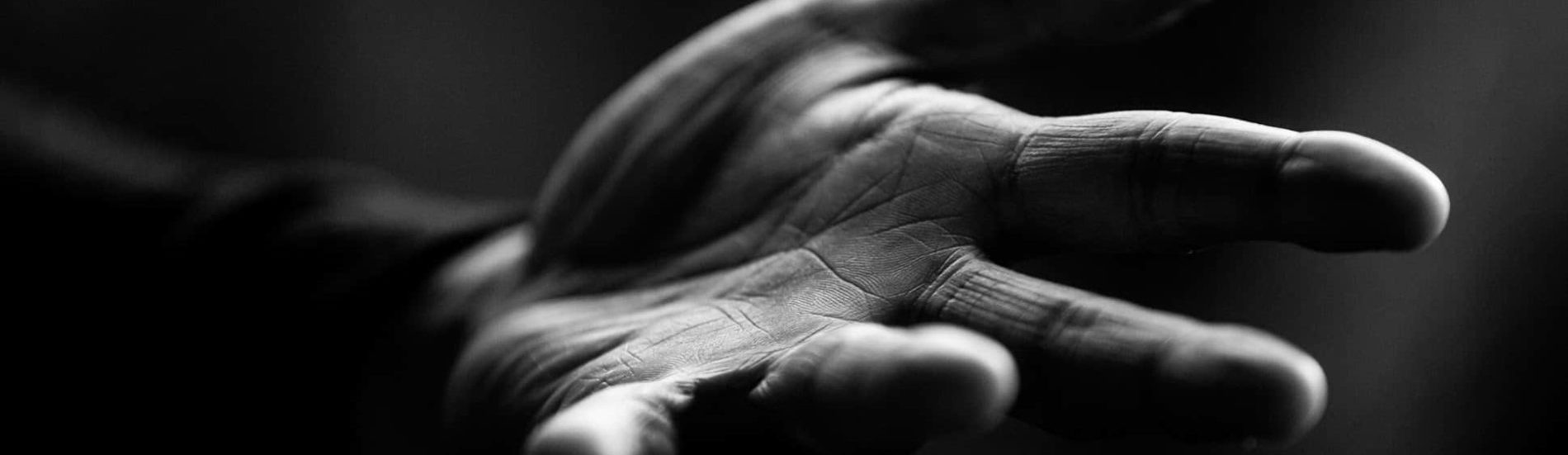 Vitality – Longevity Practices for Immunity & Beyond