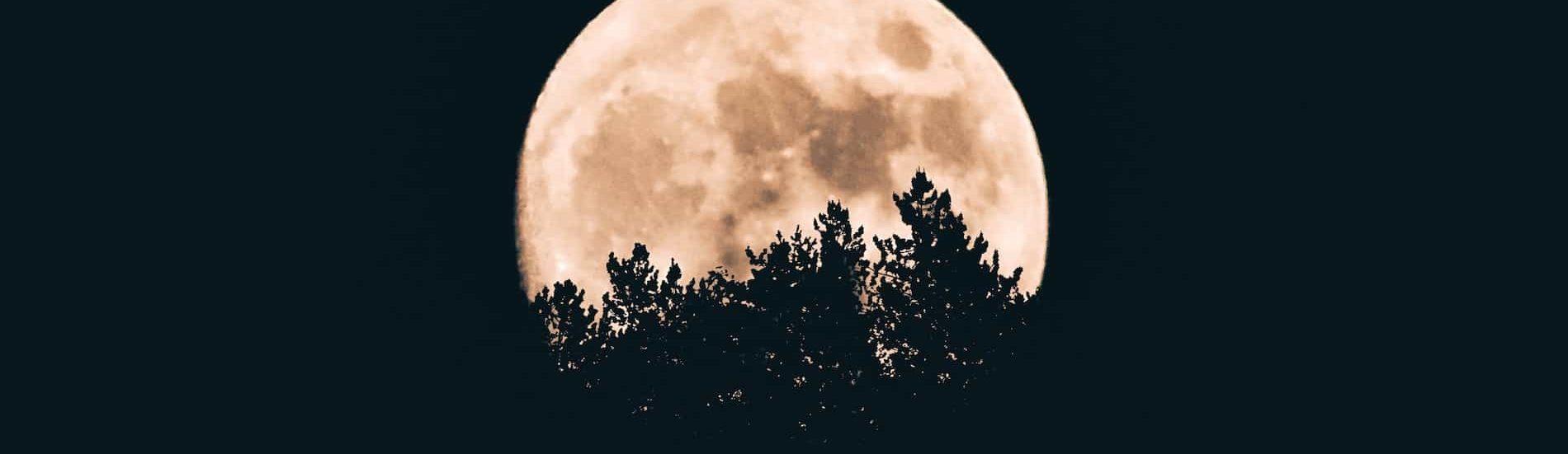 Full Moon Women's Ceremony
